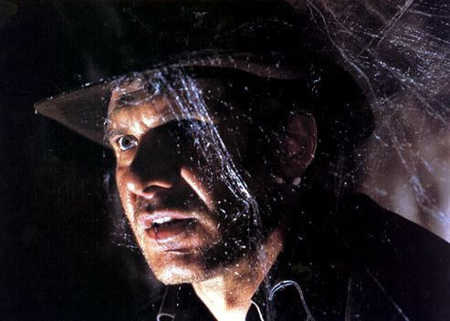 Indiana Jones covered in cobwebs